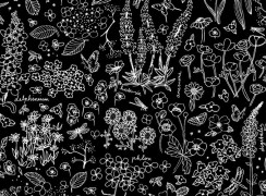cottage-garden-black