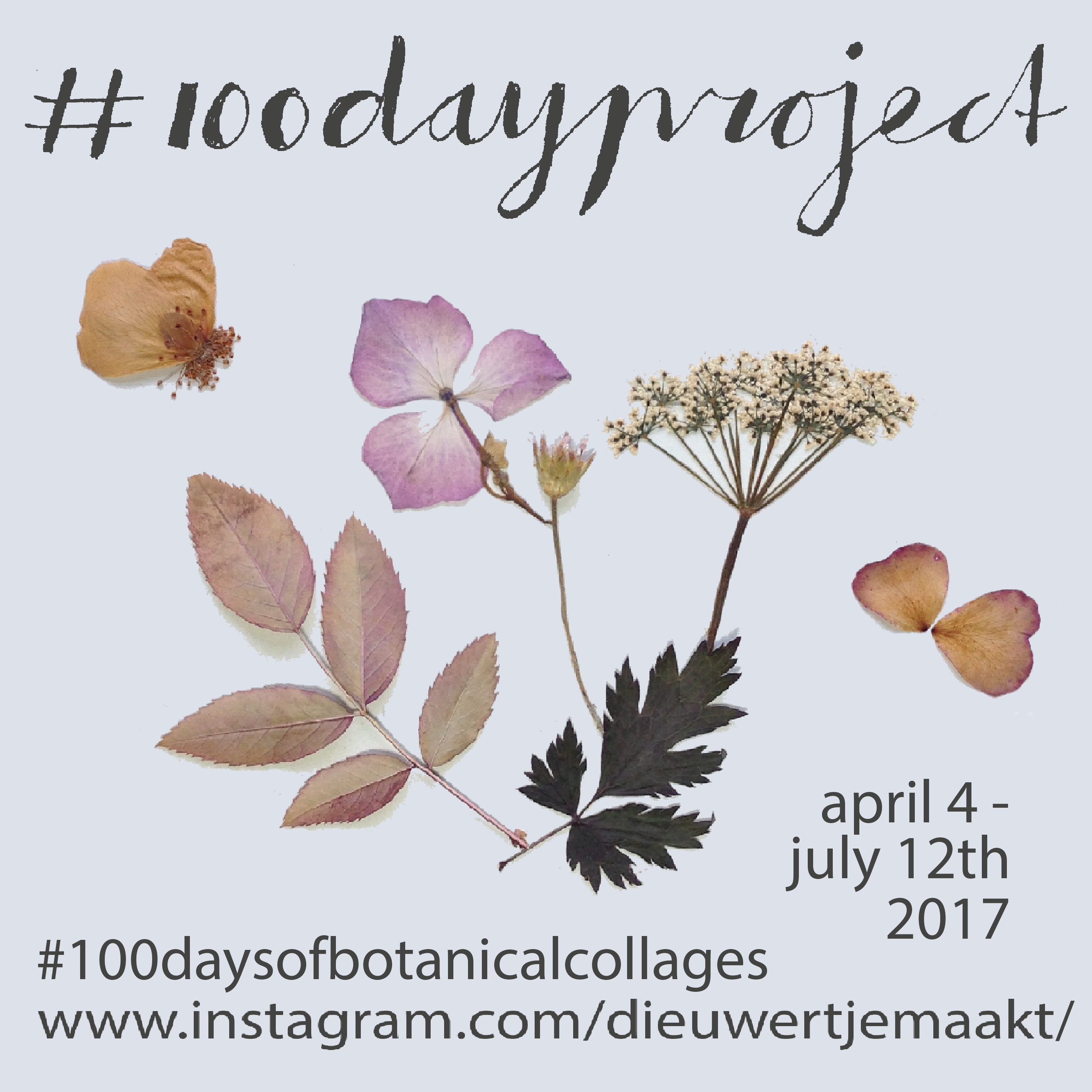 #100daysofbotanicalcollages